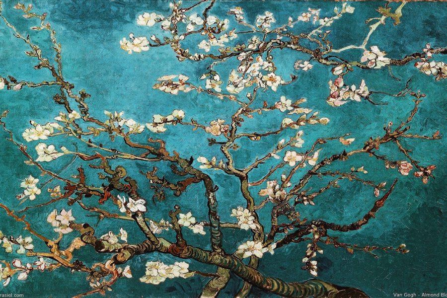 Van-Gogh-Amsterdam-Tour-Museum-Guided-Tour